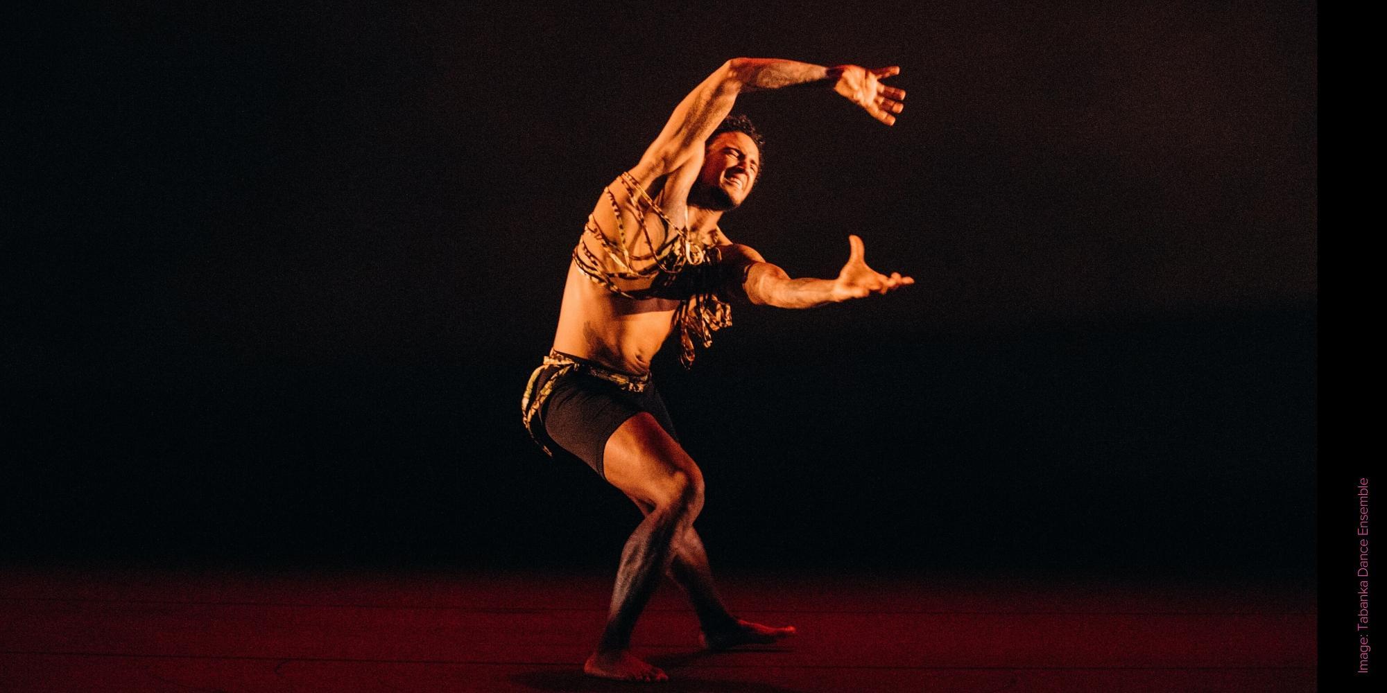 Tabanka Dance Ensemble — Page Banner